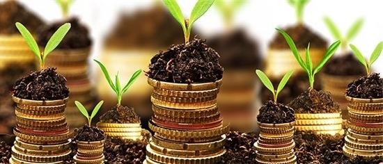 Рентабельность перманентного капитала для бизнес-плана